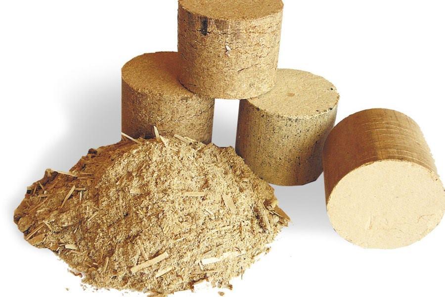 Produkcja brykietu drzewnego - brykiet powstały z trocin